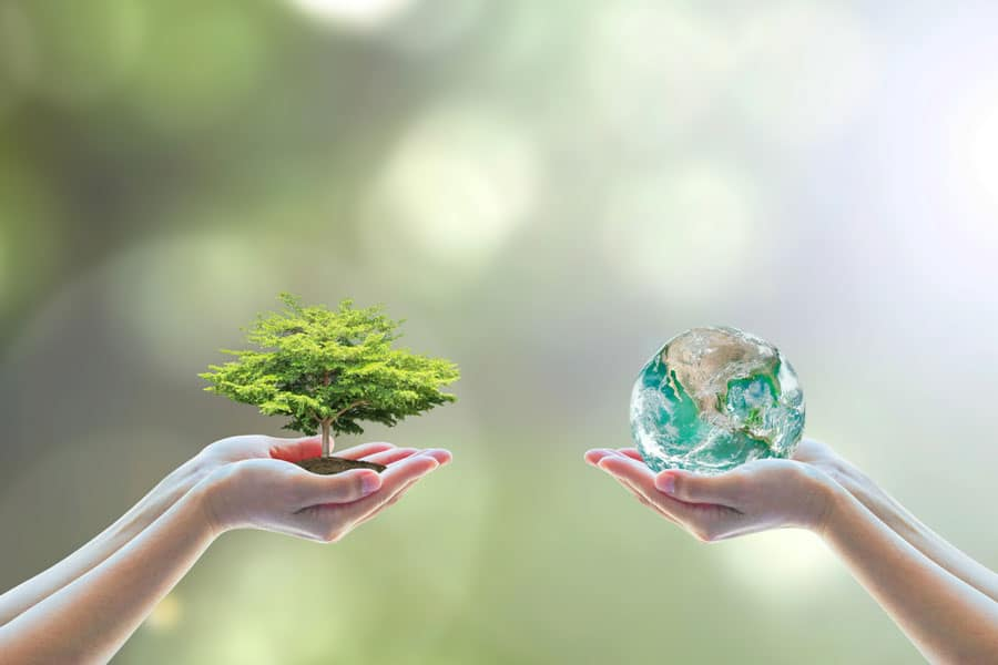 environmentally sustainable business approach
