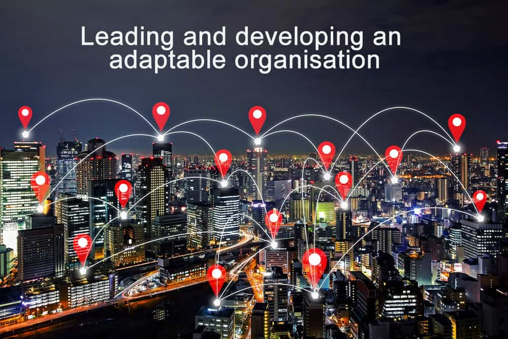 How to lead and develop an adaptable organisation