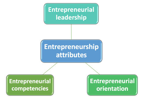Entrepreneurial attributes